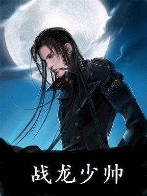 (赘婿)秦风柳晓晴小说 战龙少帅秦风无弹窗阅读